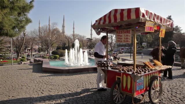 corn and chestnut seller with cart - blue mosque stock videos & royalty-free footage