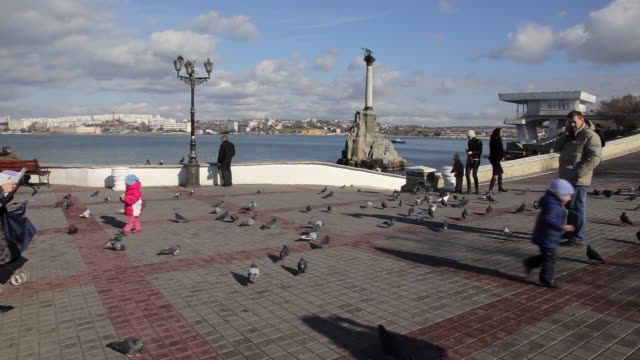 young boy chases pigeons - sevastopol crimea stock videos and b-roll footage