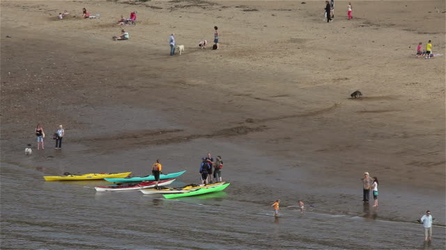 canoes and people on east cliff beach - gruppo medio di animali video stock e b–roll