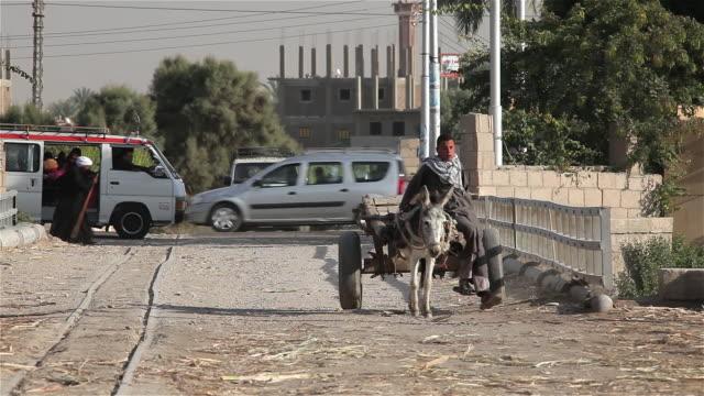 vídeos de stock, filmes e b-roll de boy with donkey and cart - animal de trabalho