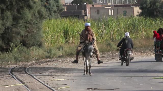 man on donkey - fahrzeug fahren stock-videos und b-roll-filmmaterial