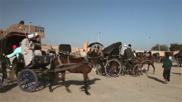 stockvideo's en b-roll-footage met horses and carriage - paardenkar