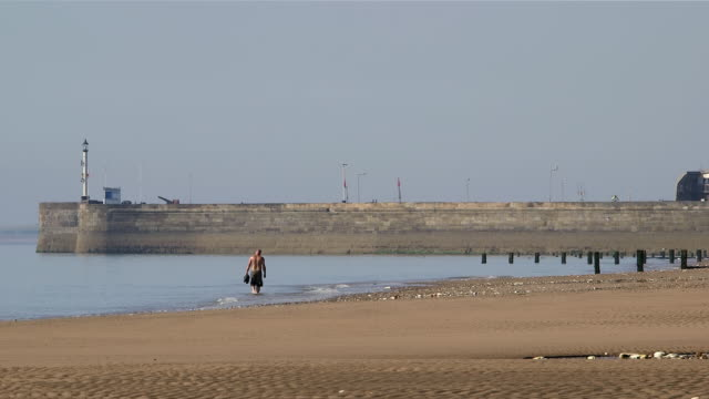 bridlington north beach harbour wall and lighthouse - gruppo medio di animali video stock e b–roll
