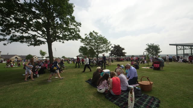 showgoers on picnic blanket - picknick stock videos and b-roll footage