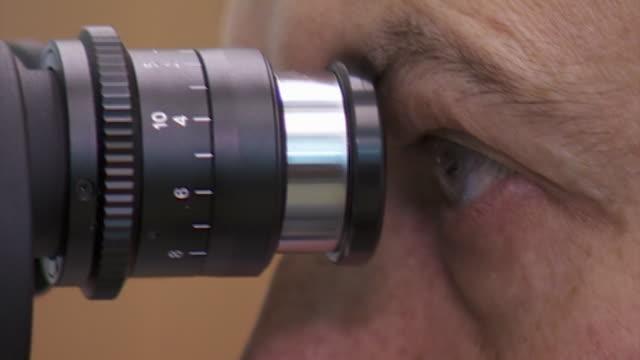 stockvideo's en b-roll-footage met nnps286s - netvlies