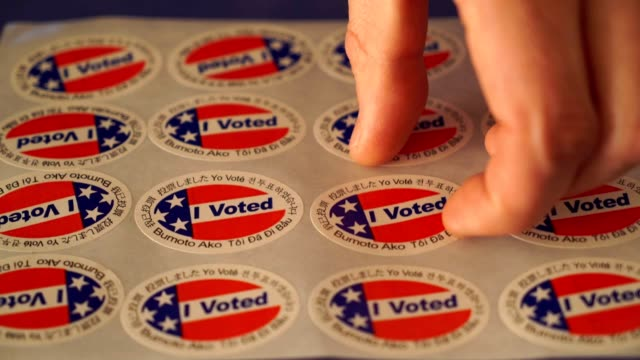 i voted man - voting ballot stock videos & royalty-free footage