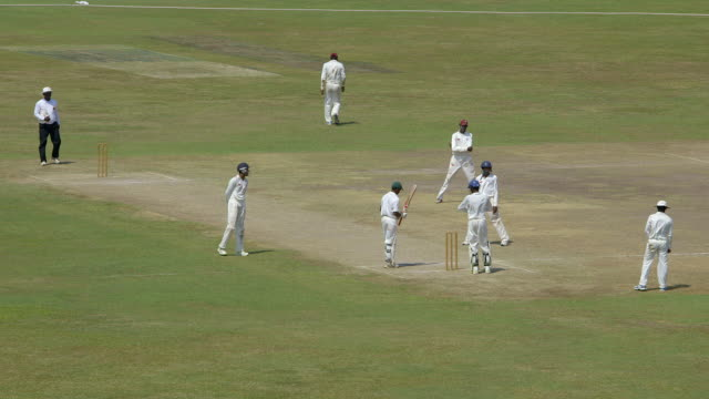 sri lankan cricket match - cricket video stock e b–roll