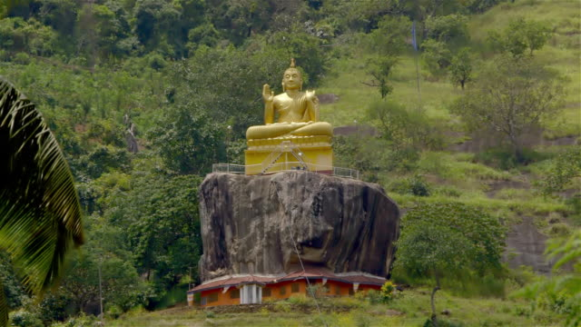 vídeos de stock e filmes b-roll de palm tree and large buddha - figura masculina