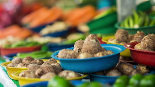 farm market - sao paulo - agricultural fair stock videos and b-roll footage