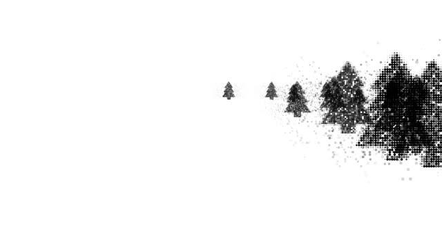vídeos de stock, filmes e b-roll de forest: (transição) - meio tom