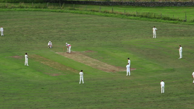 evening cricket match - cricket video stock e b–roll
