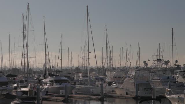 vídeos de stock, filmes e b-roll de medium angle of boats in san diego marina. docks. - medium group of objects