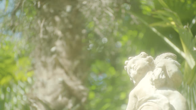 up angle of statue in garden. trees and leaves in bg. - male likeness stock videos & royalty-free footage