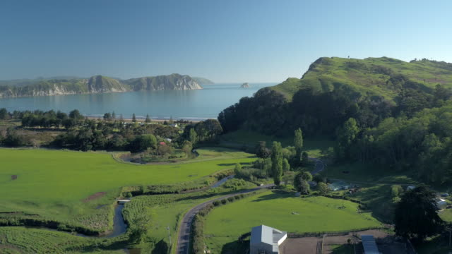tologa_bay_001 - north island new zealand stock videos & royalty-free footage