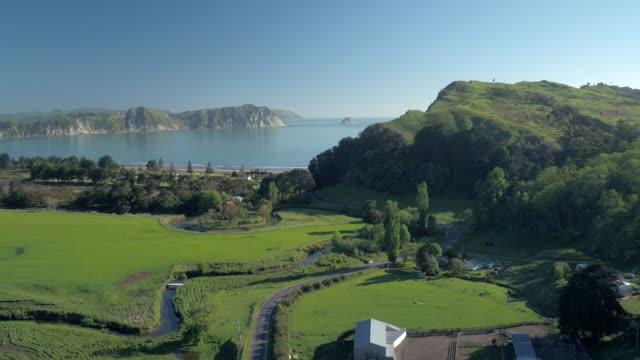 tologa_bay_001 - neuseeland stock-videos und b-roll-filmmaterial
