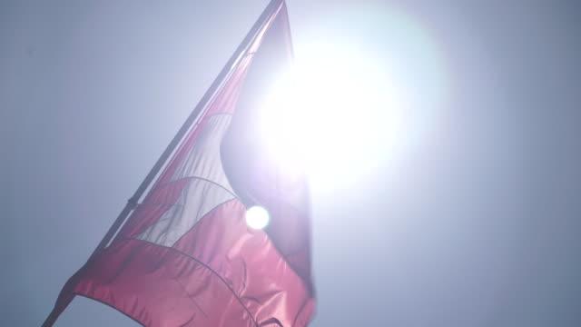 vídeos y material grabado en eventos de stock de news rushes. lib/swiss flag/1416/5/9. abra943d) - number 9