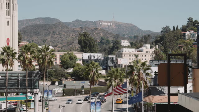 hollywood sign - hollywood sign stock videos & royalty-free footage
