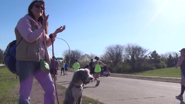 woman and dog cheer on runners - salmini stock videos & royalty-free footage