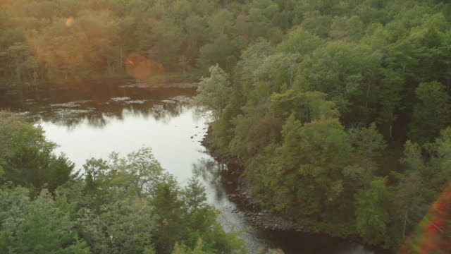 aerial of lake and cabin, lake house, or vacation house. trees in forest or woods. vacations. - nova scotia stock videos and b-roll footage