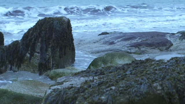 medium angle of waves hitting rocks on shore. could be beach. could be lake or ocean. - nova scotia stock videos and b-roll footage