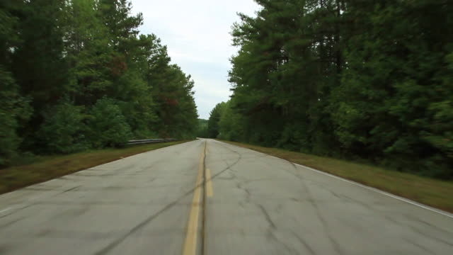 process plate straight forward driving past woods or trees in forest. - georgia country stock videos and b-roll footage