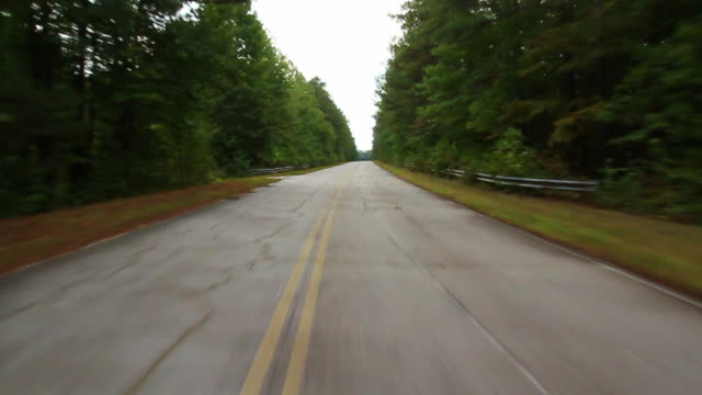 process plate straight back driving past woods or trees in forest. - diminishing perspective stock videos & royalty-free footage