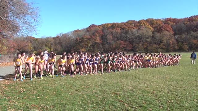 stockvideo's en b-roll-footage met cross country racers head out wearing their college colors on a beautiful fall day in the bronx - salmini