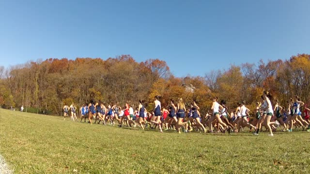 cross country racers head out wearing their college colors on a beautiful fall day in the bronx - salmini video stock e b–roll
