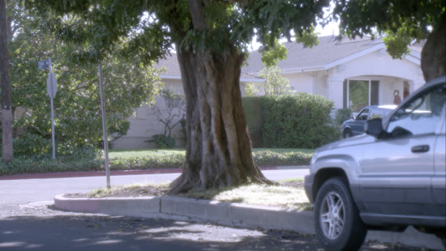 medium angle of street corner in residential area or neighborhood. - rinnsteinkante stock-videos und b-roll-filmmaterial