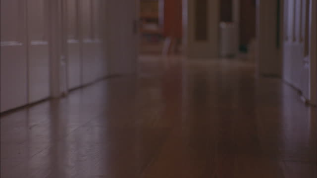 vídeos de stock, filmes e b-roll de medium angle of hallway of house or home or apartment. see hardwood floors and white wood molding around doorways and floors. see pug dog  run down hallway away from camera. - átrio interior de casa