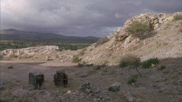 vidéos et rushes de medium angle of two horse drawn wagons or buckboards in desrt area or mountain region. see rocks, dirt, brush, and green bushes scattered about. see gray clouds above and mountains in distance. see group of men on horses ride into frame. - animaux au travail