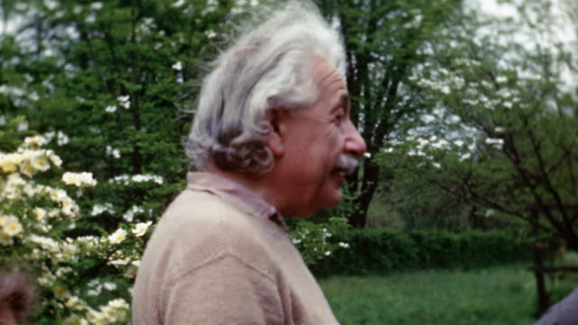 - albert einstein stock videos & royalty-free footage