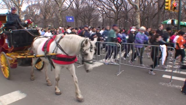 funny scene with runners in one lane and hansom cabs in the adjacent lane in central park - salmini stock videos and b-roll footage