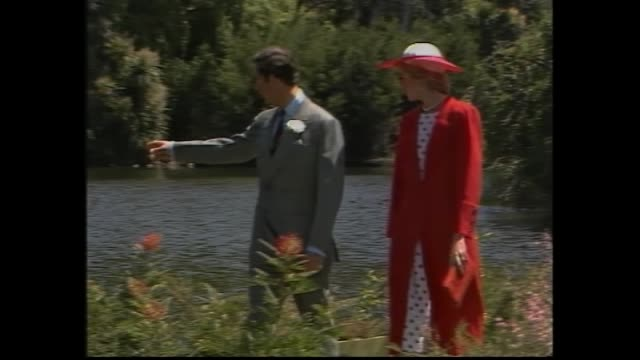 wide shot lake and crowd / prince charles and diana walk alone in melbourne royal botanical gardens diana in red overcoat / cygnets and swan swim in... - 1985年点の映像素材/bロール