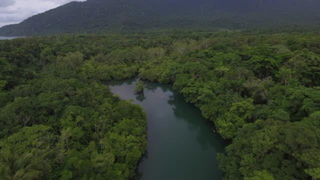 Australia_drone_4k_drone_daintree_clouds_mangrove_epic_capetribulation