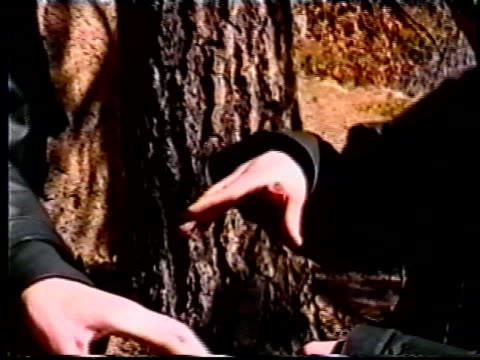 columbine killers, eric harris and dylan klebold, joking after shooting guns in wood for video made six weeks before school massacre/ littleton,... - ominous stock videos & royalty-free footage