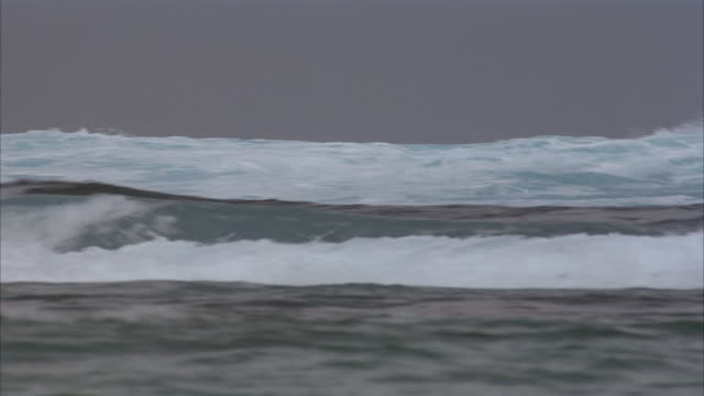 wide angle of choppy ocean water with small waves. - kotelett stock-videos und b-roll-filmmaterial