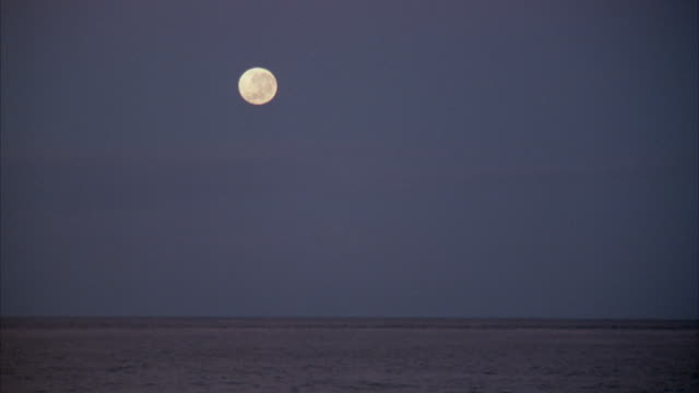 wide angle of ocean with view of full moon. - full moon stock videos & royalty-free footage