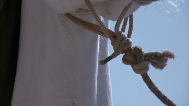 CLOSE ANGLE OF WHITE HORSE MUZZLE, NECK, MOUTH, AND NOSE AND ROPE TIED OT NECK OR HALTER. SEE MAN'S HAND GRAB HALTER ROPE.