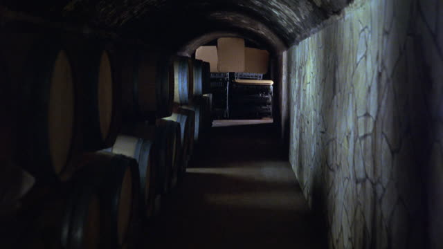 hand held walking or running pov through wine cellar or basement. stone building and barrels. - wine cask stock videos and b-roll footage