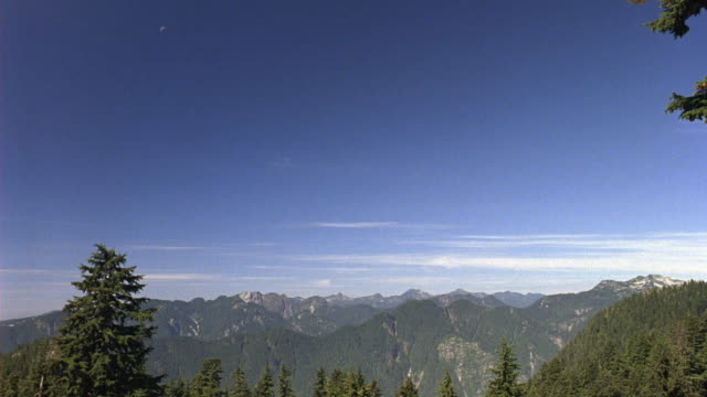wide angle of mountain vista view, forests, trees. wilderness. - wide stock videos and b-roll footage