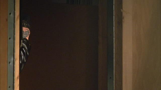 stockvideo's en b-roll-footage met medium angle. arm of person with tattoos holding shotgun from behind door. gun facing from l-r. gun fires. insert. - jachtgeweer