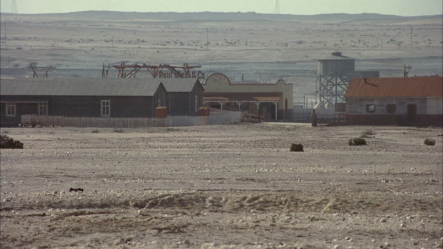 medium angle of old western style houses in deserted dusty town. see white horse enter frame from right. it gallops toward camera, mane flying in the wind. trail of dust rises from the ground from its hoof beats. could possibly be arabian. - wild west stock videos & royalty-free footage