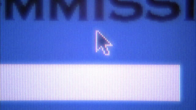 CLOSE ANGLE OF COMPUTER MONITOR. COMPUTER MOUSE POINTER ON BLUE MOVES TO BOTTOM LEFT AND CLICKS ON TRASH ICON. MONITOR FLASHES WITH MANY DIFFERENT NUMERIC IMAGES AND MENUS. INSERT.