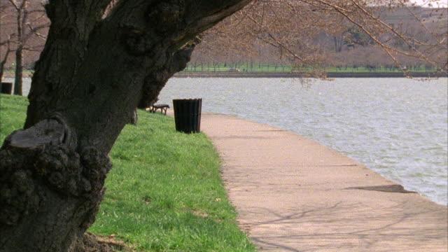 vídeos y material grabado en eventos de stock de wide angle of path in west potomac park along tidal basin of potomac river. could be lake. bare tree branches. - bare tree