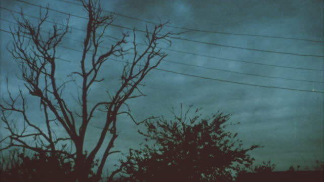 stockvideo's en b-roll-footage met still shot of bare tree and bush during or before a storm. rain clouds are moving right of the shot in sky in the background. there are five electric wires going across the top of the shot. day is dark. - bare tree