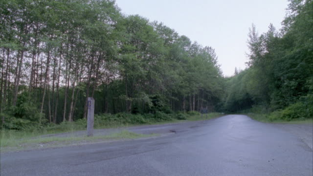 MEDIUM ANGLE PAN LEFT OF MOUNTAIN ROAD WITH DENSE TREES. GRAY VINTAGE CAR OR ASTON MARTIN DRIVES QUICKLY TO LEFT.