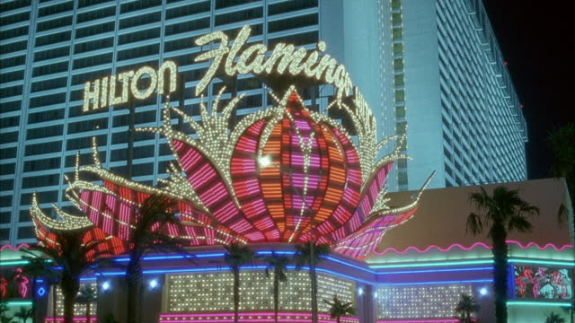 medium angle of entrance to flamingo hotel. neon flower logo sign with hilton flamingo on top flashing in red, pink and gold. white hotel building in background. - flamingo hilton stock videos & royalty-free footage