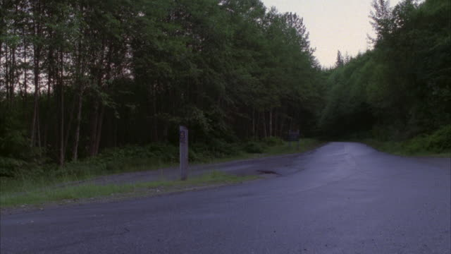 MEDIUM ANGLE OF MOUNTAIN ROAD WITH DENSE TREES ON SIDES. GRAY ASTON MARTIN OR VINTAGE CAR APPEARS, CAMERA PANS LEFT AND CAR PASSES QUICKLY TO LEFT. SEE MOUNTAINS IN BACKGROUND.
