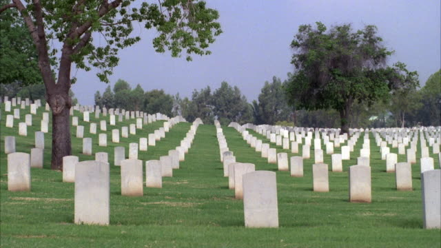 WIDE ANGLE, PAN RIGHT OF CEMETERY WITH ROWS OF HEADSTONES OR TOMBSTONES IN MILITARY OR VETERANS' CEMETERY.TREES SCATTERED ABOUT. LOS ANGELES NATIONAL CEMETERY.